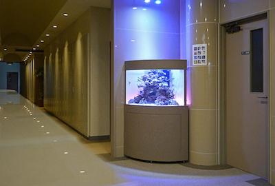 アクアリウム設置事例・ホテル