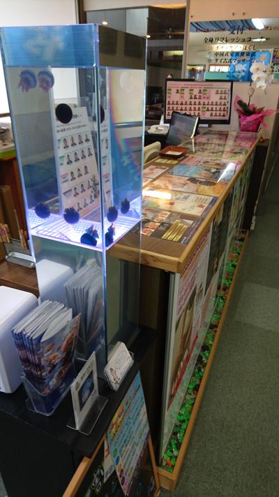 静岡市リラクゼーション店