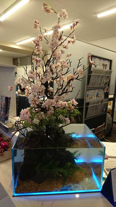 静岡市店舗