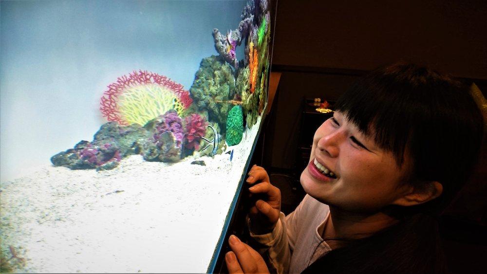 「第12回 Aquarium TOJO 全国フォトコンテスト2018」