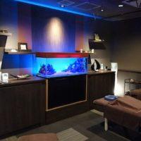 Aquarium TOJO 全国フォトコンテスト2018