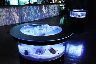 テーブル型水槽