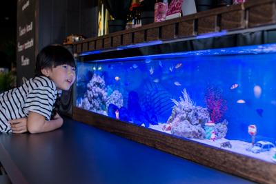 第13回 Aquarium TOJO 全国フォトコンテスト2019